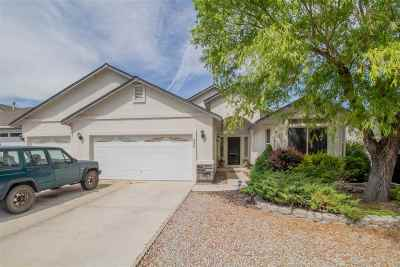 Fernley Single Family Home For Sale: 590 Wedge Ln.