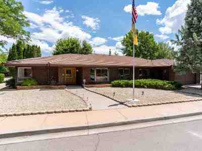 Carson City Single Family Home For Sale: 1521 Valencia Court