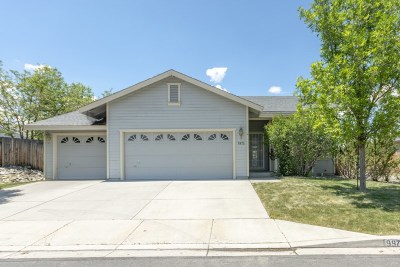 Washoe County Single Family Home For Sale: 9975 Rock River Dr.