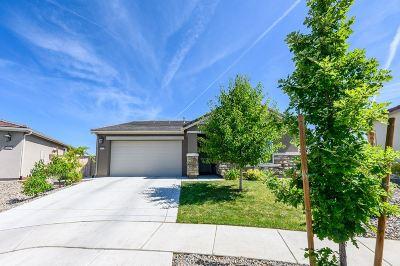 Reno Single Family Home New: 10062 Ignacio Circle