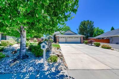 Reno Single Family Home New: 6042 Citation Ct