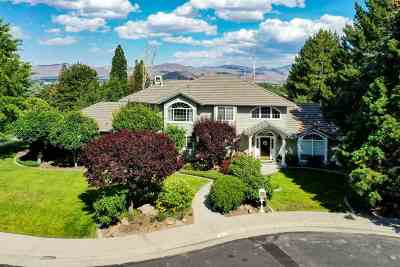 Washoe County Single Family Home For Sale: 4302 Junewood