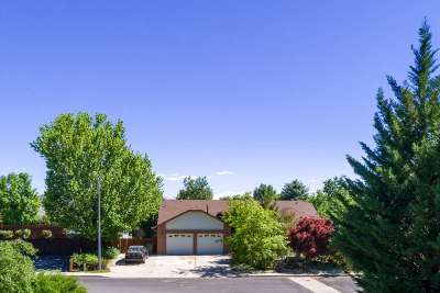 Gardnerville Single Family Home Active/Pending-Loan: 1354 Wilson Circle