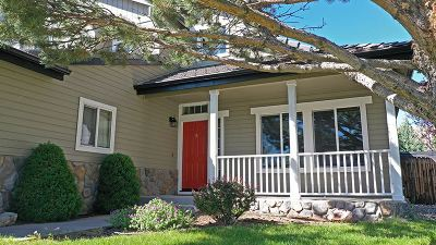 Reno, Sparks, Carson City, Gardnerville Single Family Home New: 2174 Stone View Drive