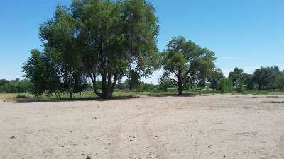 Fallon Residential Lots & Land For Sale: 785 Wetland