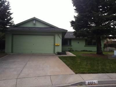 Carson City Single Family Home For Sale: 4021 Montez Dr.