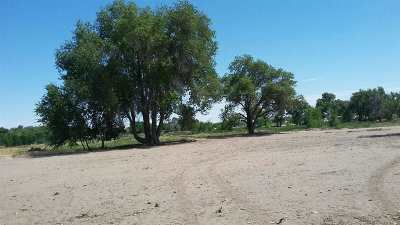 Fallon Residential Lots & Land For Sale: 833 Wetland