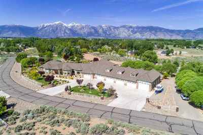 Gardnerville Single Family Home For Sale: 1560 Willow Creek