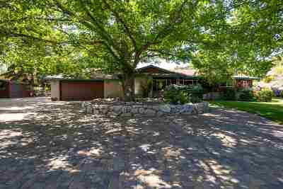 Gardnerville Single Family Home Active/Pending-Loan: 974 Birdie Court