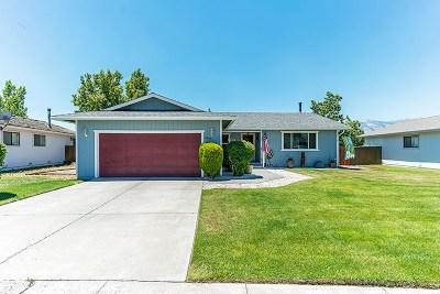 Gardnerville Single Family Home Active/Pending-Loan: 669 Bowles Ln