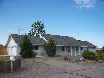 Fallon Single Family Home For Sale: 4305 Falcon Drive