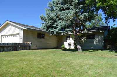 Carson City Single Family Home For Sale: 1928 Marian Ave