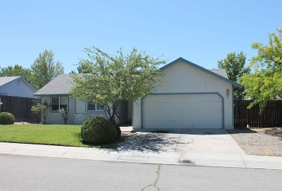 Carson City Single Family Home For Sale: 991 Haystack