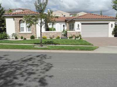 Washoe County Single Family Home For Sale: 8588 Timaru Trail