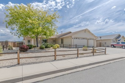 Washoe County Single Family Home For Sale: 1419 Talking Sparrow Drive
