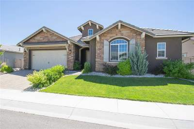 Washoe County Single Family Home For Sale: 10060 Gold Cup Ln