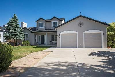 Washoe County Single Family Home For Sale: 3665 Butch Cassidy Dr #Dr