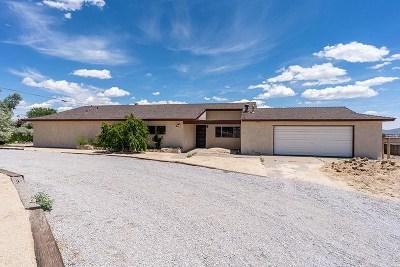 Reno Single Family Home For Sale: 11350 Cimarron Drive