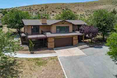Washoe County Single Family Home For Sale: 130 Del Mesa Cir