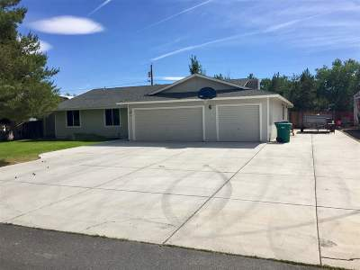 Washoe County Single Family Home For Sale: 45 N Gobi Circle