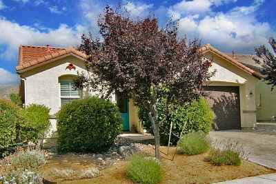 Washoe County Single Family Home For Sale: 11420 Torino Court