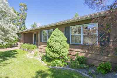 Washoe County Single Family Home For Sale: 3140 W Plumb Ln