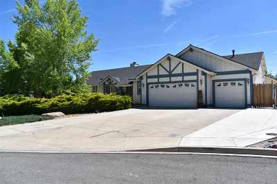 Washoe County Single Family Home New: 30 Michael Place