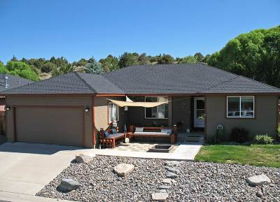 Gardnerville Single Family Home Price Reduced: 110 Mark Street