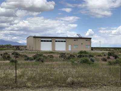 Winnemucca Single Family Home For Sale: 3955 Feedlot Rd