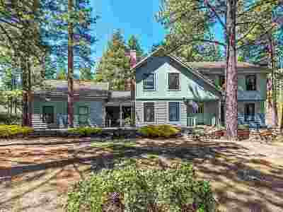 Reno Single Family Home New: 450 Yellow Pine Rd.