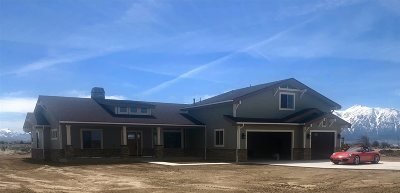 Minden NV Single Family Home New: $849,900
