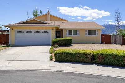 Gardnerville Single Family Home Active/Pending-Loan: 610 Patricia Court