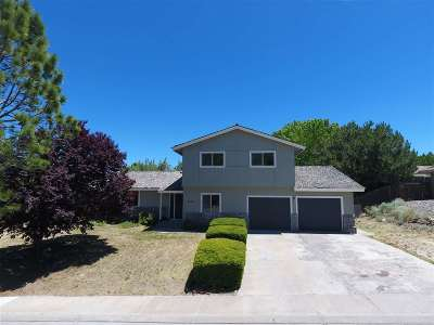 Winnemucca Single Family Home For Sale: 4163 Foothill Dr.