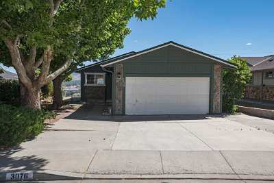 Washoe County Single Family Home New: 3076 Achilles Drive