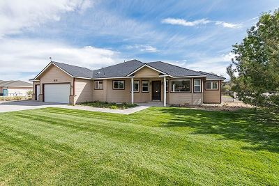 Gardnerville Single Family Home For Sale: 1833 Long Court