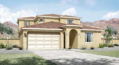 Washoe County Single Family Home New: 10450 Gold Mine Dr