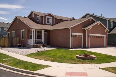 Washoe County Single Family Home New: 8900 Finnsech