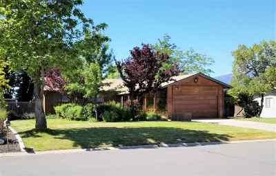 Gardnerville Single Family Home Active/Pending-Loan: 1249 Monarch Lane