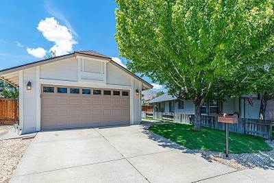 Washoe County Single Family Home New: 1121 Ambassador Drive