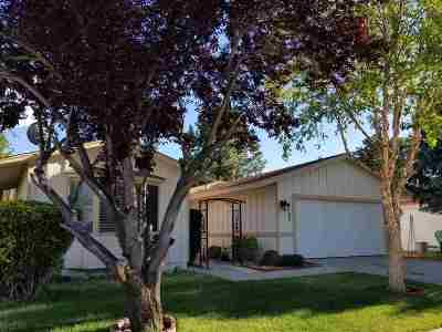 Washoe County Single Family Home New: 4380 Mira Loma