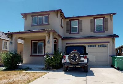 Washoe County Single Family Home New: 2233 Big Trail Cir