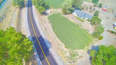 Fernley Single Family Home For Sale: 4550 Farm District Road
