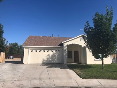 Washoe County Single Family Home New: 29 Silver Springs Court