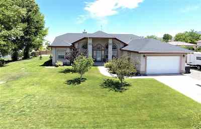 Winnemucca Single Family Home For Sale: 5877 Water Canyon Rd