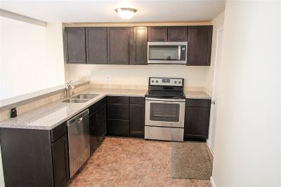 Carson City Condo/Townhouse Active/Pending-Loan: 1441 E Long