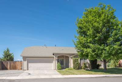 Washoe County Single Family Home New: 7425 Sansol Dr.