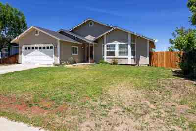 Gardnerville Single Family Home For Sale: 1456 Patricia