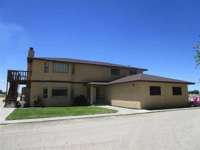 Fallon Single Family Home For Sale: 3550 Harrigan Road