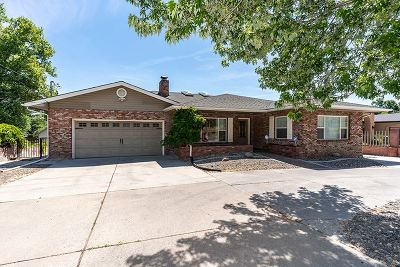 Reno Single Family Home For Sale: 2250 Plumas