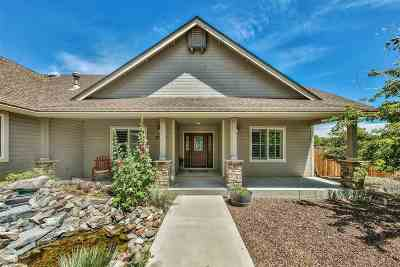 Minden NV Single Family Home For Sale: $749,000